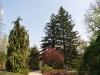 20110417_Berggarten_13