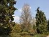 20110417_Berggarten_14