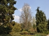 20110417_berggarten_37