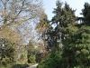 20110417_berggarten_41