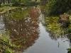 20110417_berggarten_45