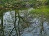 20110417_berggarten_60
