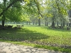 20090415_tiergarten_03