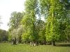 20090415_tiergarten_21